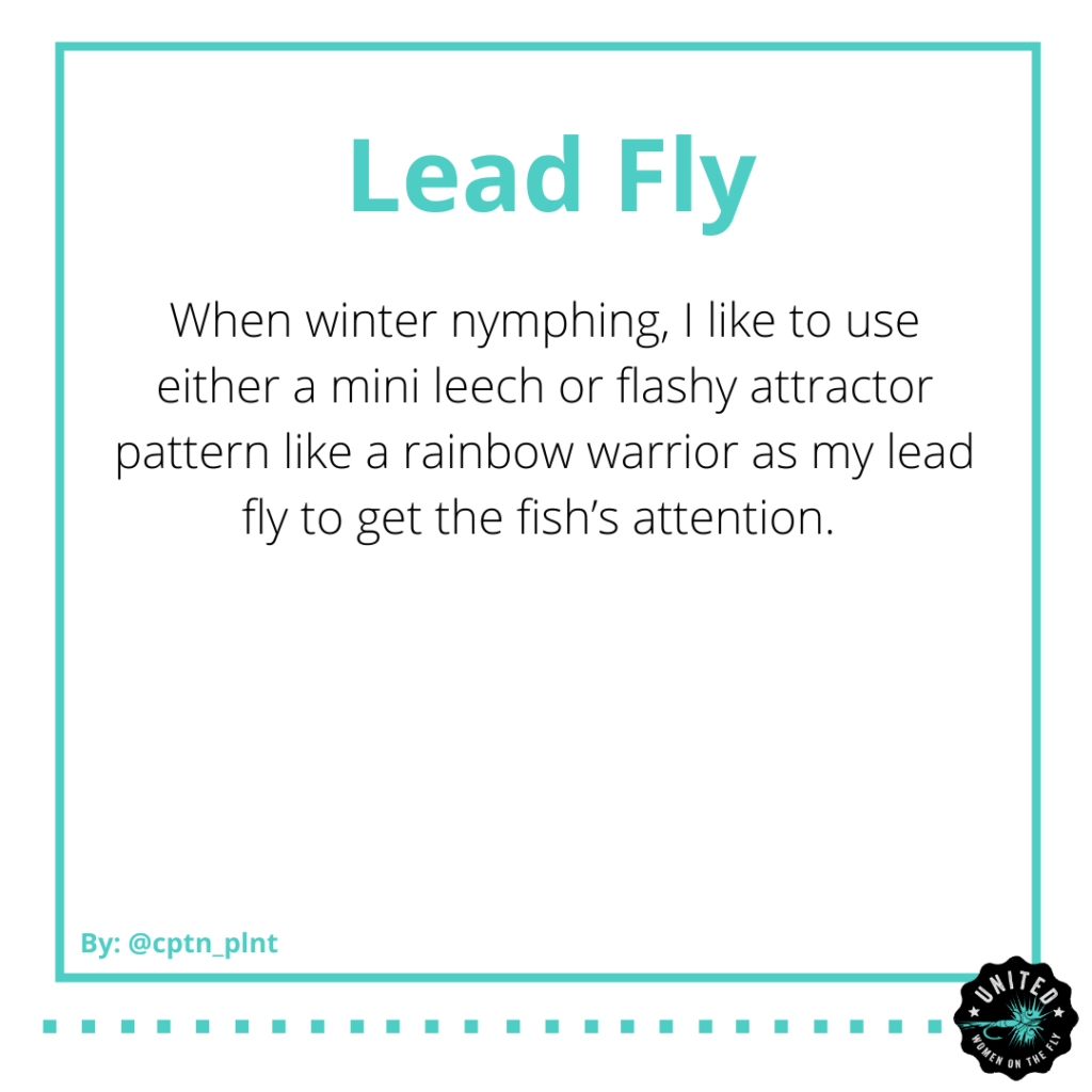 Winter Nymph Fishing Tips by Lisa Le - United Women on the Fly