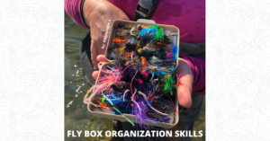 Fly Box Organization - Featured Image 1200 x 628