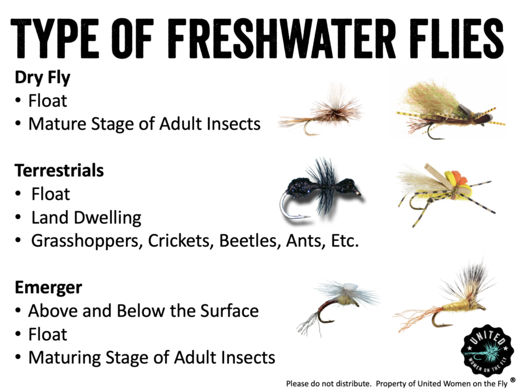 Types of Freshwater Flies - Dry, Terrestrials and Emergers1